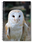 Common Barn Owl Spiral Notebook