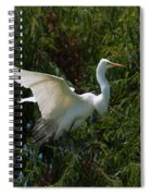 Common Egret Spiral Notebook