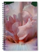 Ruffled Coral Spiral Notebook