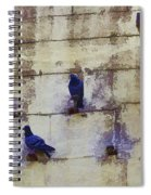 Couple Of Pigeons On A Wall Spiral Notebook