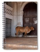 Cow At Church At Colva Spiral Notebook