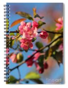 Crab Apple Spiral Notebook