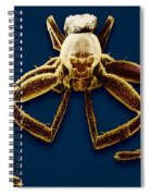 Crab Spider Spiral Notebook