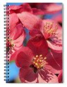 Crab Apple  Spiral Notebook
