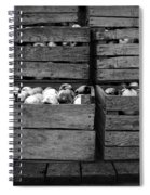 Crated Apples Waiting For The Cider Press Spiral Notebook