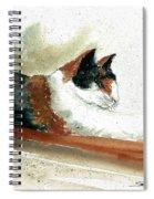 Crazy Cat Spiral Notebook