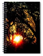 Creole Trail Sunset Spiral Notebook