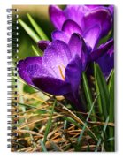 Crocus And Drops Spiral Notebook