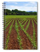 Cultivated Land Spiral Notebook