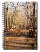 Cypress Waterway Spiral Notebook