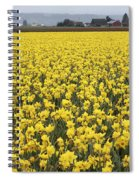Daffodil Field Spiral Notebook