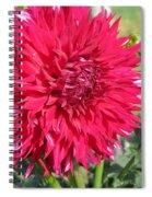 Dahlia Named Mingus Erik Spiral Notebook