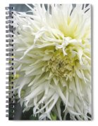 Dahlia Named Tsuki Yori No Shisa Spiral Notebook