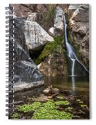 Darwin Falls Spiral Notebook