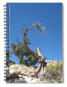Dead Tree At Grand Canyon Spiral Notebook