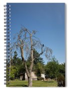 Dead Tree With Crow Spiral Notebook