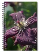 Deep Purple Clematis Spiral Notebook