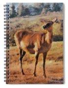 Deer On Mountain  Spiral Notebook