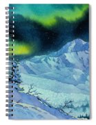 Denali Night Spiral Notebook