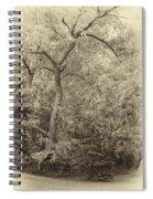 Determination Sepia Spiral Notebook