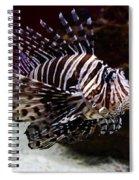 Devil Firefish Spiral Notebook
