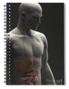 Digestive System Male Spiral Notebook