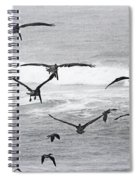 Dinner Time At Pelican Land Spiral Notebook