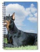 Doberman Pinscher Dog Spiral Notebook
