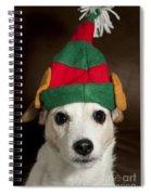 Dog Wearing Elf Ears, Christmas Portrait Spiral Notebook