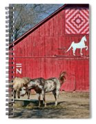 Double Bar N - 4 Spiral Notebook