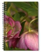 Double Lenten Rose Spiral Notebook