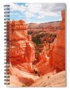 Down Into Bryce Spiral Notebook