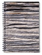 Drift Wood Spiral Notebook