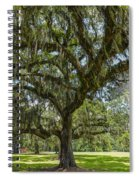 Dripping With Spanish Moss Spiral Notebook