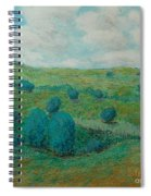 Dry Hills Spiral Notebook