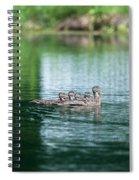 Duck Call Spiral Notebook