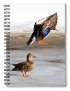 Ducking Around Spiral Notebook