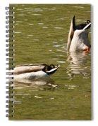 Ducks Spiral Notebook