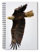 Eagle Flight Spiral Notebook