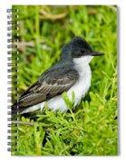 Eastern Kingbird Spiral Notebook
