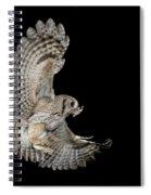 Eastern Screech Owl Spiral Notebook