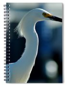 Egret Of Matlacha 2 Spiral Notebook