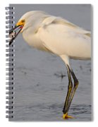 Egret With Fish Spiral Notebook