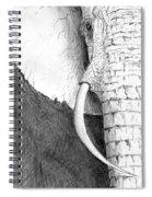 Elephant Study Spiral Notebook