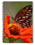 Encapturing Beauty Spiral Notebook