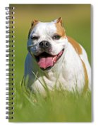 English Bulldog Spiral Notebook