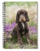 English Cocker Spaniel Puppy Spiral Notebook