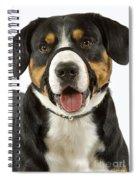 Entlebuch Mountain Dog Spiral Notebook