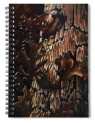 Eruption Spiral Notebook