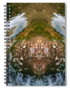 Faces In Water II Spiral Notebook
